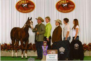 2008november_horse_show