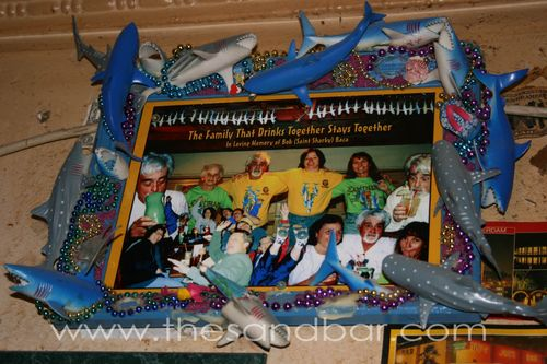 20080204 shark family tribute