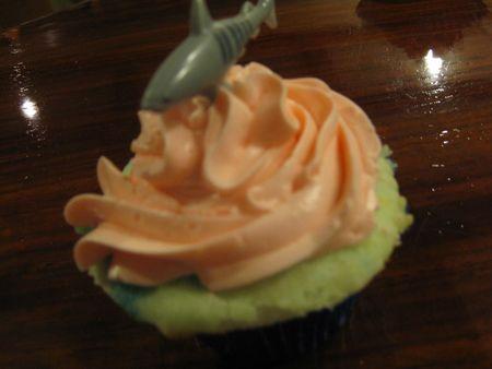 20101107_cupcakes_0002