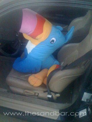 20101118_toucan