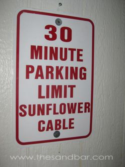 20110327_sunflower_parking_0001
